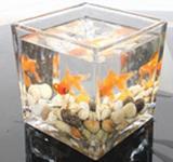玻璃花瓶粘接防水uv胶水无影胶水